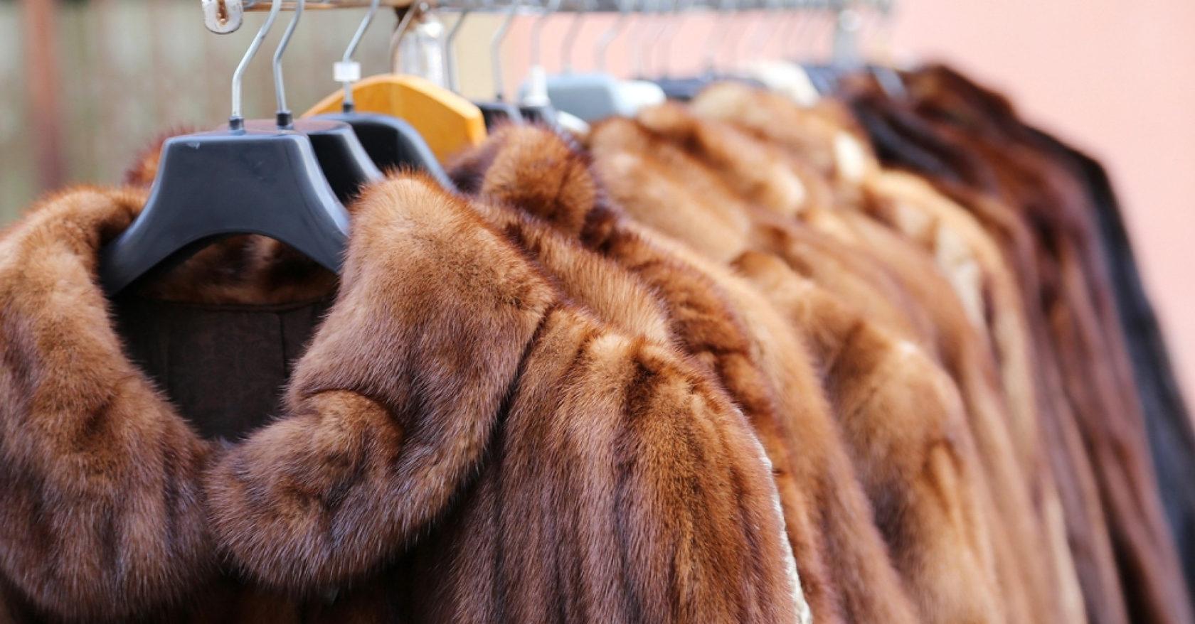 В Дагестане обнаружили 2,7 тысяч немаркированных меховых изделий