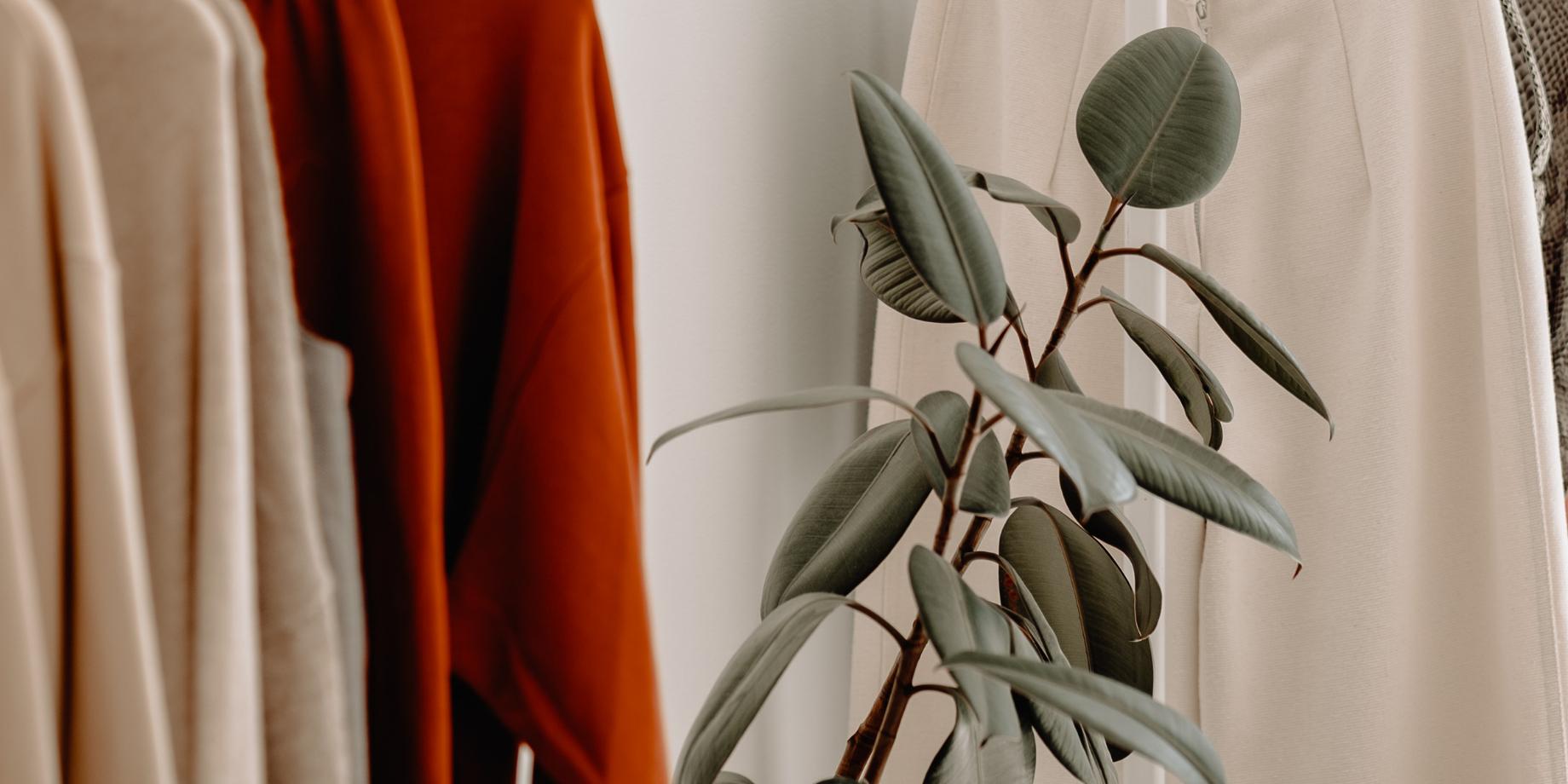 Экологический союз разработает стандарт для текстильной продукции