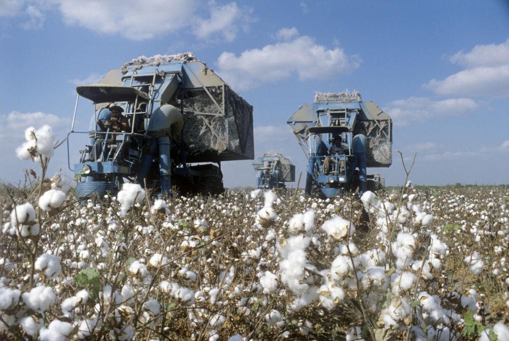 В Узбекистане обсудили работу хлопково-текстильных кластеров