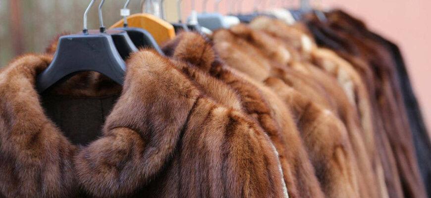 Витебский меховой комбинат планирует организовать переработку кожевенного сырья