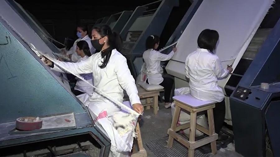 Сирийская фабрика по производству тканей планирует закупить новое оборудование в России