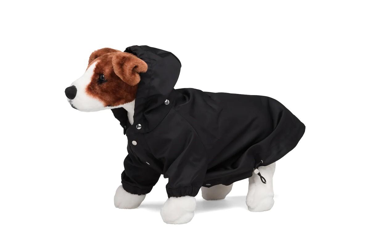 Prada представил нейлоновый плащ для собак