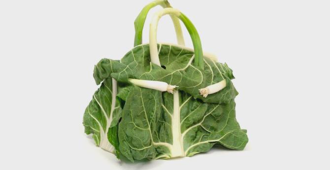 Hermès представил коллекцию съедобных сумок из овощей